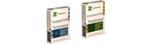 urogenitalny-system-mu